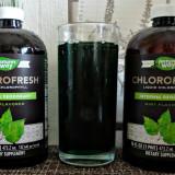 ТОП-10 хлорофилла с iHerb: из «крови» растений в кровь человека