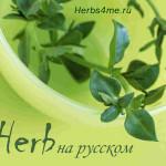 Инструкции Айхерб: как получить скидку и превести сайт Iherb на русский язык