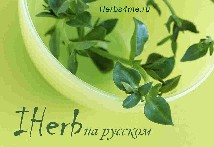Переводим официальный сайт Айхерб на русский язык